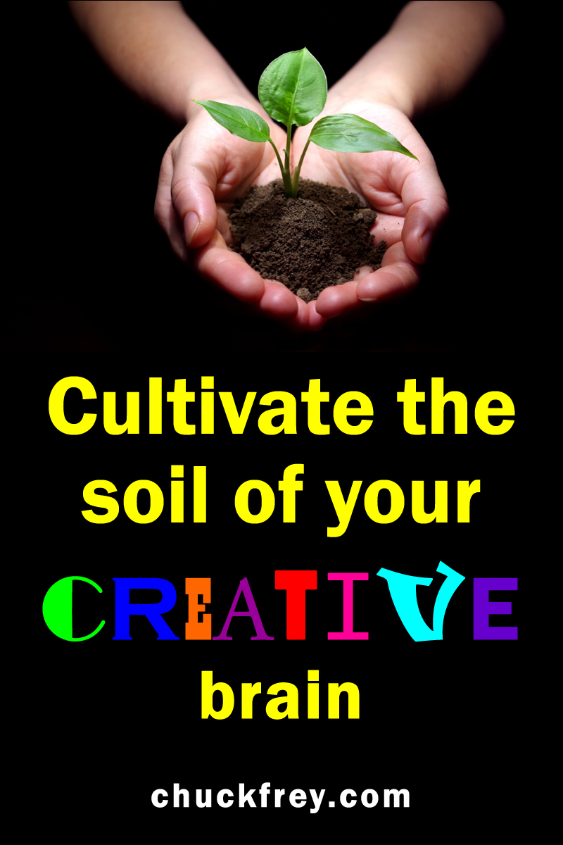 cultivate the soil of your creative brain